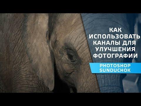Использование каналов для улучшения фото | Как  повысить контрастность и детализацию изображения