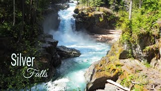 Mt. Rainier National Park Silver Falls Trail