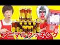 セイキンとマンドリルのアニマルクッキング♪ の動画、YouTube動画。