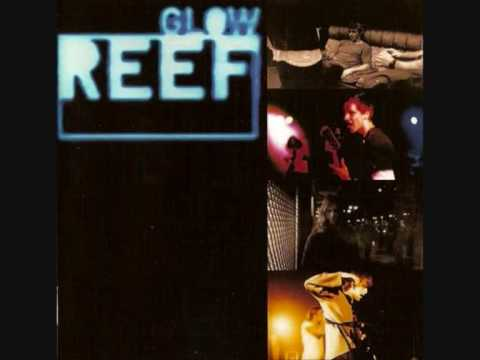 Download Reef - Place Your Hands