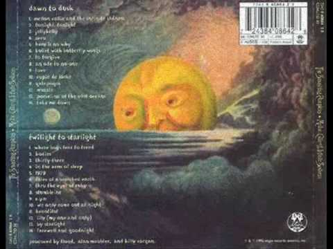 smashing pumpkins - muzzle acoustic