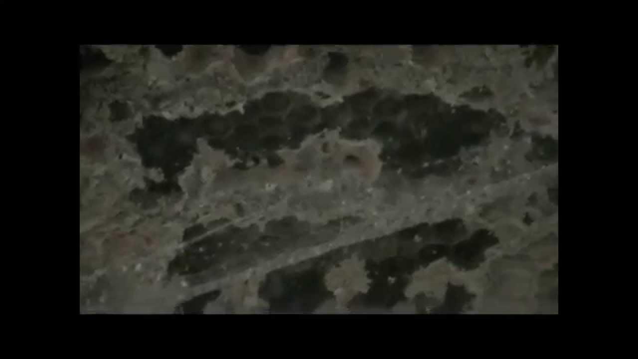 sublimm pr sente un nid de frelons gu pes install dans une maison youtube. Black Bedroom Furniture Sets. Home Design Ideas