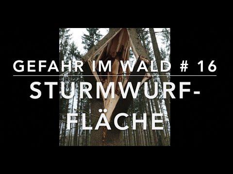 Sturmwurf -