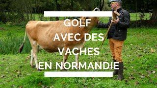 Golf paysan à la Ferme aux Cinq Saisons en Normandie