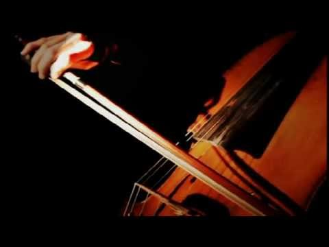 safe-and-sound---cello-cover-by-sharon-gerber-(civil-wars)