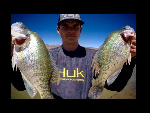 Crappie Fishing San Carlos Lake!!! | OVER 100+ FISH CAUGHT!! | Fishing Arizona!!