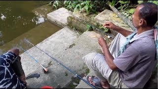 Best Fish Hunting | Awesome Fishing in Village | traditional fishing in the village