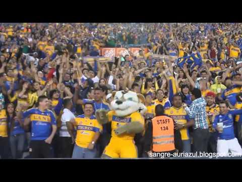 Harlem Shake con la afición de Tigres UANL en el estadio Universitario HD/HQ