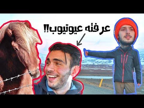 لقينا عربي يشحد توصيلة في آيسلندا