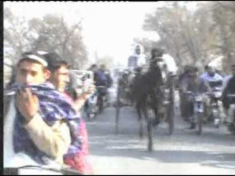 Ghourghushti horse Kala Tufaan DVD