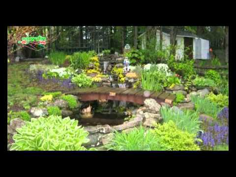 Bassins de jardin - YouTube