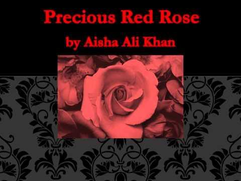 Precious Red Rose