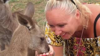 145. Australia - Sanktuarium dzikich zwierzat