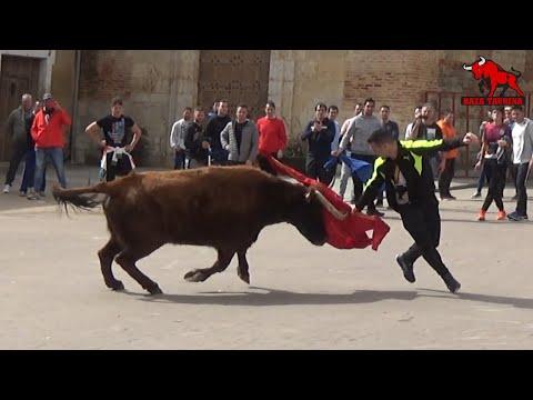 V Toro Del Carnaval. Medina De Rioseco. 9 Marzo 2019