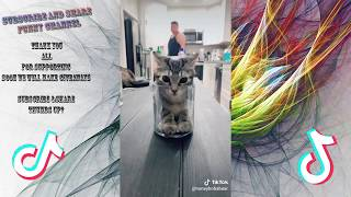 You will LAUGH SO HARD that YOU WILL FAINT - FUNNY CAT compilation Part #03