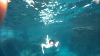swimming at crater lake
