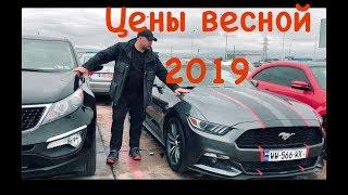 Цены на Автопапа после растаможки. Пригон Авто из США в Украину. Грузия Авторынок Autopapa 2019