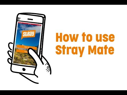How To Use Stray Mate