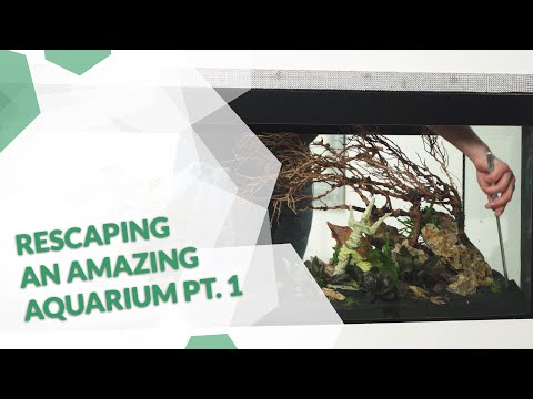 super-geiles-raumteiler-aquarium---aus-alt-mach-neu-teil-1