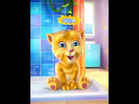 Simple simon met a pie man |nursery rhymes|song for kids|Talking Ginger