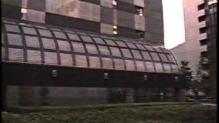 作品:悪妻は夫をのばす!落合博満物語 (1993年 フジテレビドラマ 花王...