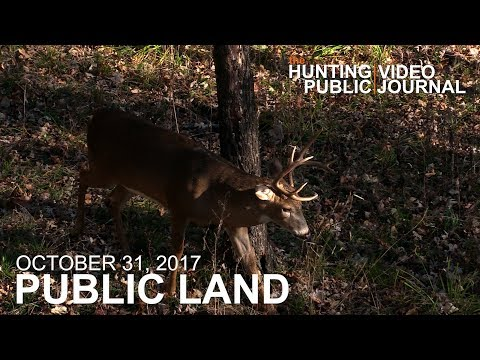 Public Land Day 25: Missouri Bucks In Bow Range | The Hunting Public
