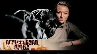 Профдеформация | Агрессивная среда с Александрой Говорченко