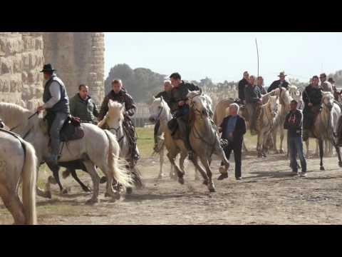 Create Away : Aigues Mortes Festival