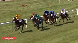 Vidéo de la course PMU PRIX LA LAGUNE