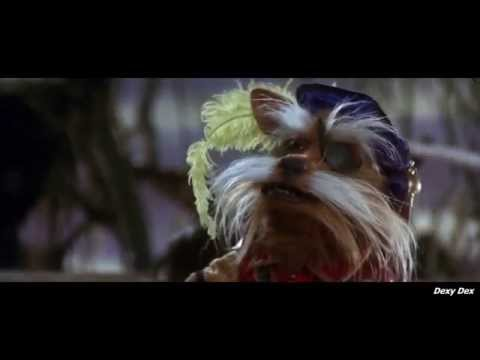 "Labyrinth  Didymus ""None may pass without my permission"""