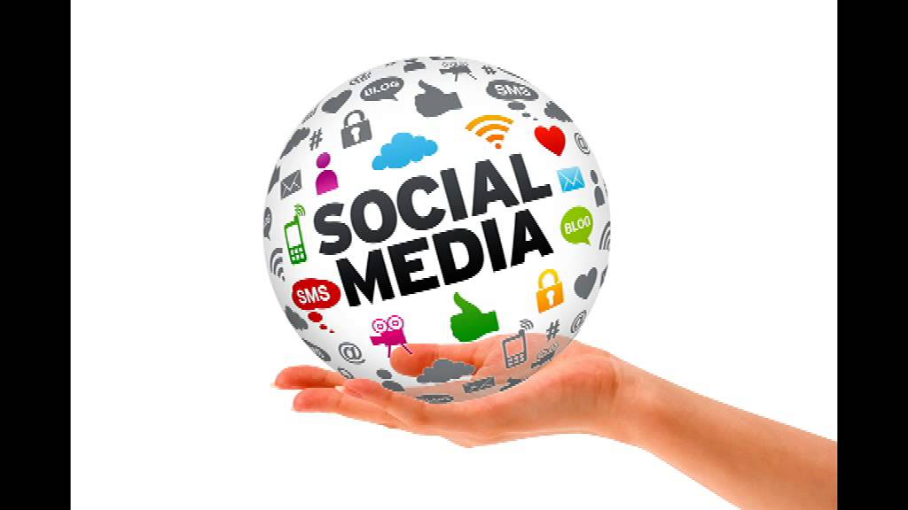Social network sites definition history and scholarship for Soil media definition
