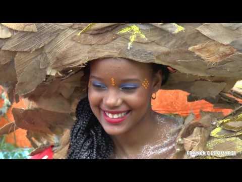 Carnaval Martinique 2017 dimanche gras dans les rues de fort- de- france
