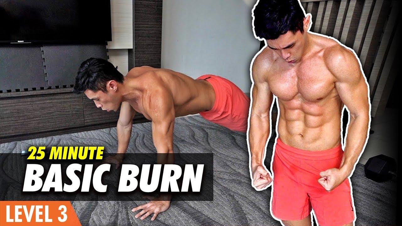 Basic FULL BODY | No Equipment Home Workout (Level 3-4)