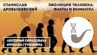 Станислав Дробышевский - Эволюция человека: факты и вымысел