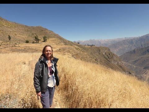 2015 Colca Canyon Peru