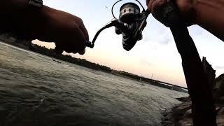 STRIPED BASS DAM FLOOD GATES STRIPER FISHING HMONG