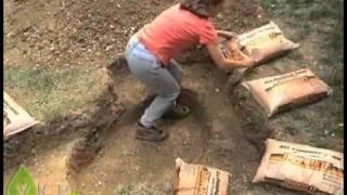 видео Альпийская горка своими руками: схемы, варианты высадки растений и место на участке