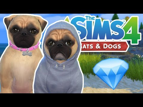 DANTDM'S PUGS! | The Sims 4 YouTuber Pets | Episode 16
