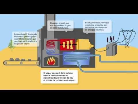 Com Funciona Una Central De Biomassa