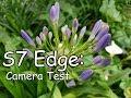 S7 Edge Camera Test