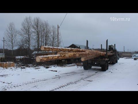Черные лесорубы в Зубовой Поляне | Black Woodcutters In Zubovа Polyana