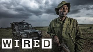 Poaching the Poachers: How Kenya is Saving Elephants with Night Vision Tech