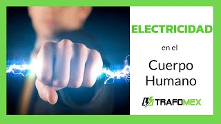 Electricidad En El Cuerpo Humano Estatica Youtube