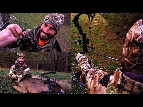 DEER DROPS IN IT'S TRACKS! BOW HUNTING 2019 - Archery Season Whitetail Hunt - Nugent