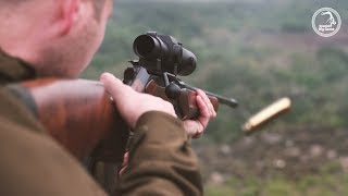 Spanish Monteria with SBG Professional Outfitters  - Driven Boar, Deer and Mouflon Hunting
