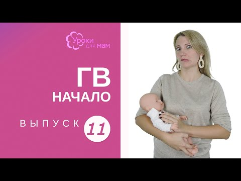 Как не перекормить новорожденного грудным молоком комаровский