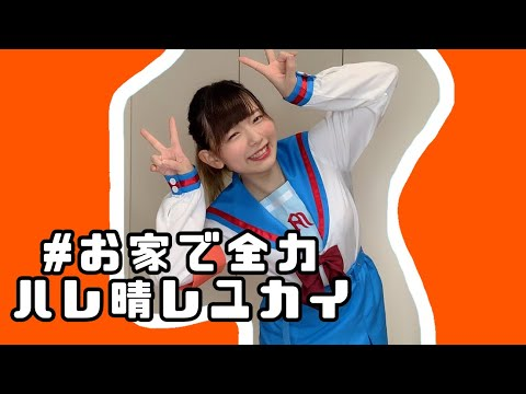 【 踊ってみた 】お家で全力ハレ晴レユカイ 【 Ayane 】【 こなもん 】
