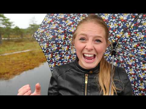 Exerience Estonia Outside of Tallinn! - Estonian Bog Walk Tour