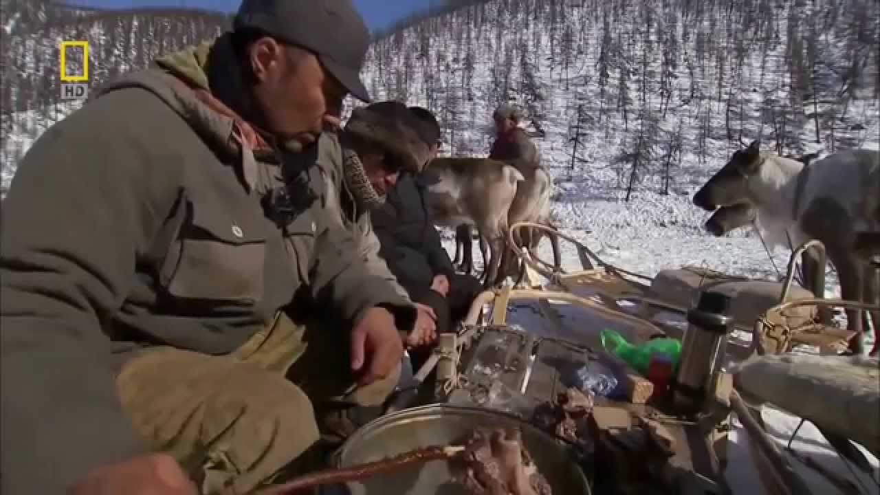 National Geographic Documentary - National Geographic Wild Documentary 2015 - Wild Russia Siberia
