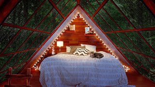 Cozy Cabin Ambience - Rainstorm with Thunder Sounds for Sleep 8 Hours